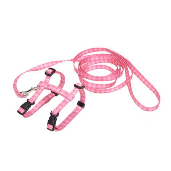 Fashion Cat Harness and Lead Combos