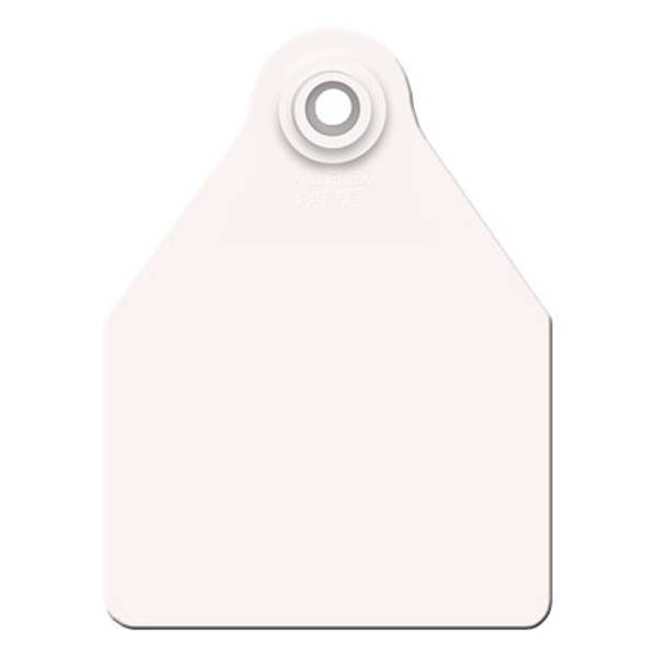 Large White Ear Tag