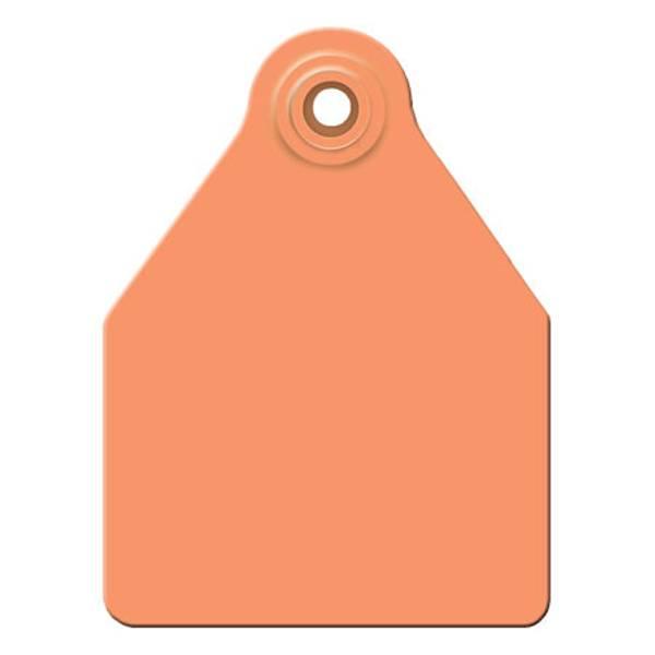 Large Orange Ear Tag