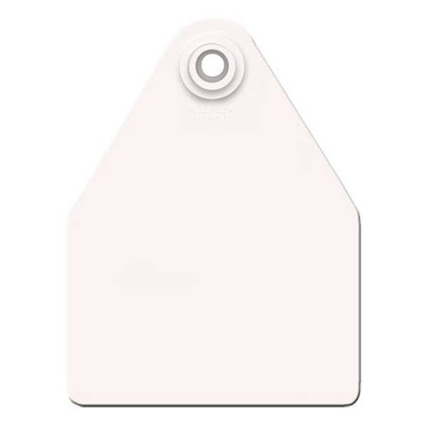 Maxi White Ear Tag