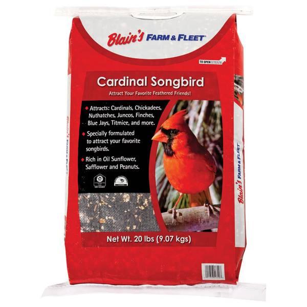 Cardinal Songbird Bird Seed