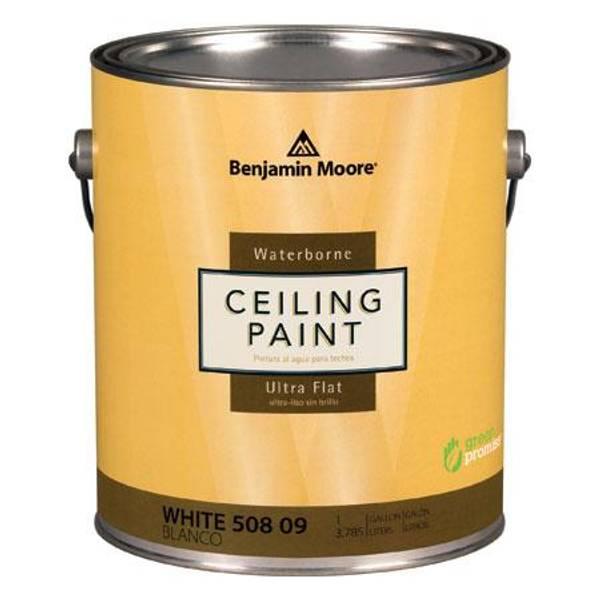Benjamin moore 1 quart waterborne ceiling paint for Benjamin moore eco spec paint reviews