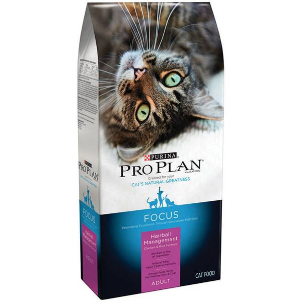 Focus Hairball Management Chicken & Rice Formula Cat Food