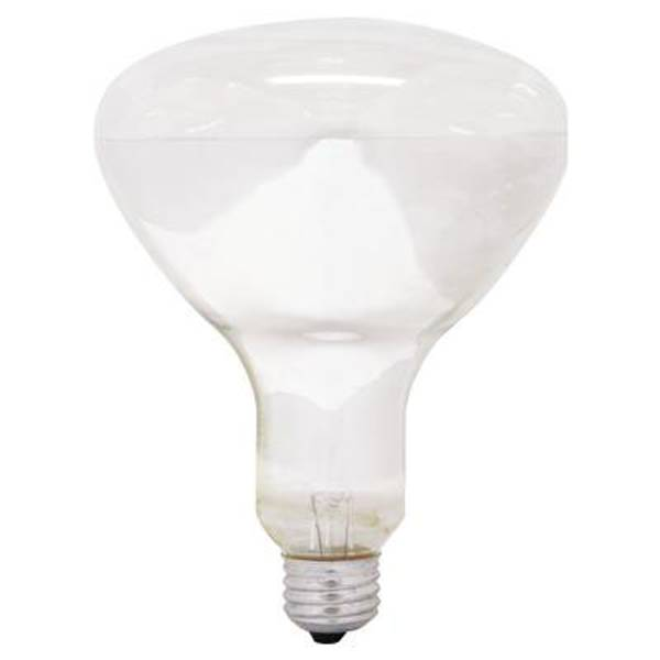 Soft White Floodlight Bulb