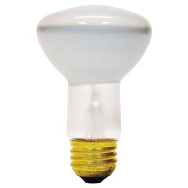 R20 Soft White Indoor Reflector Flood Light