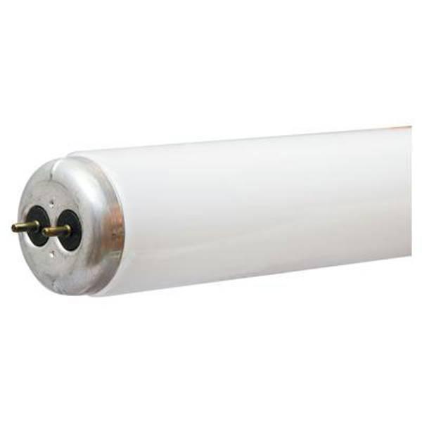 T12 Kitchen & Bath Warm White Fluorescent Tube Light Bulb