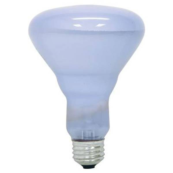 Ge Full Spectrum Reveal Indoor Flood Light Bulb