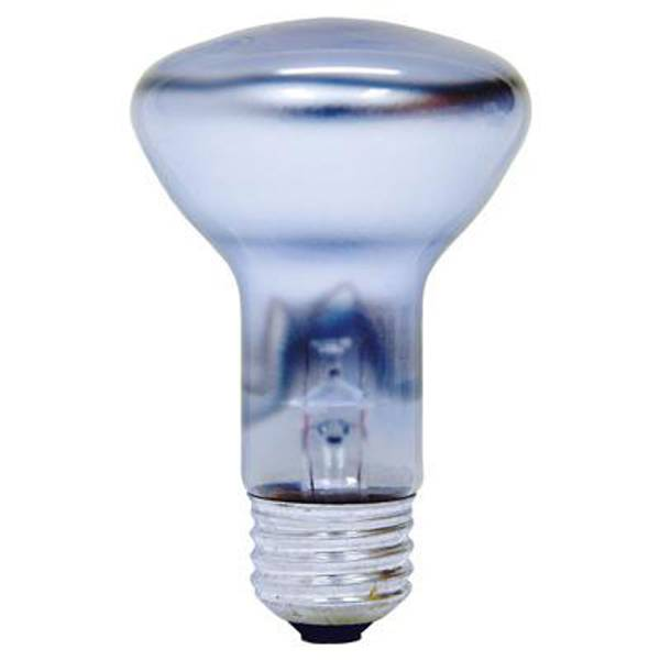 Reveal Indoor Reflector Flood Light Bulb