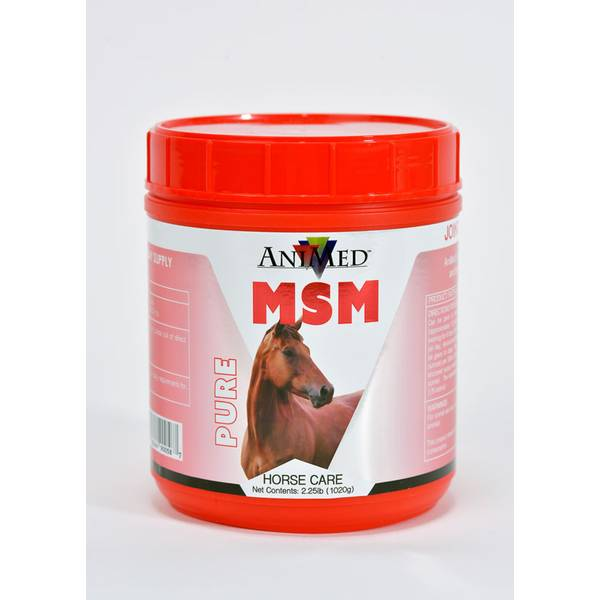 MSM Equine Supplement