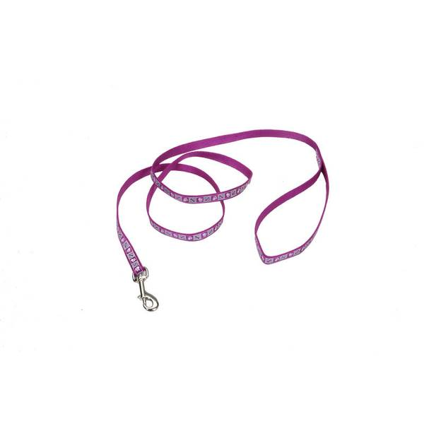 Lazer Brite Reflective Dog Leash