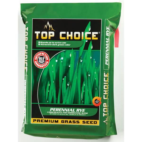 Perennial Rye Premium Grass Seed