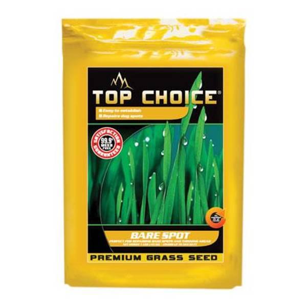 Bare Spot Premium Grass Seed