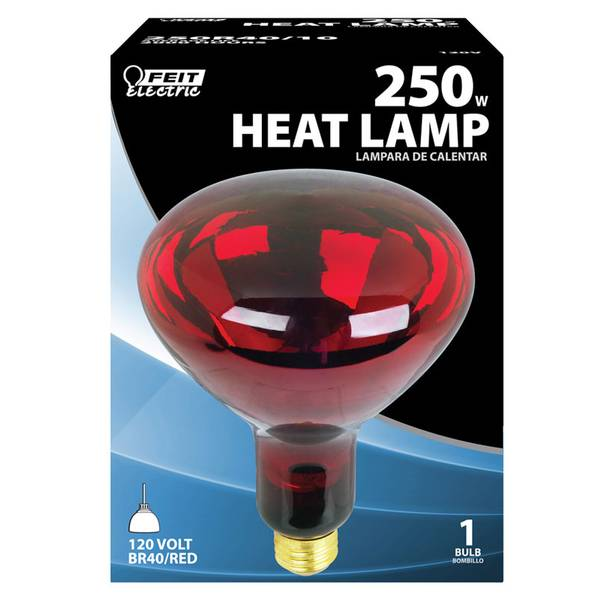 250W R40 Red Heat Lamp