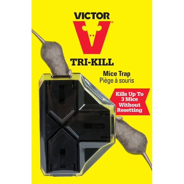 Tri - Kill Mouse Trap