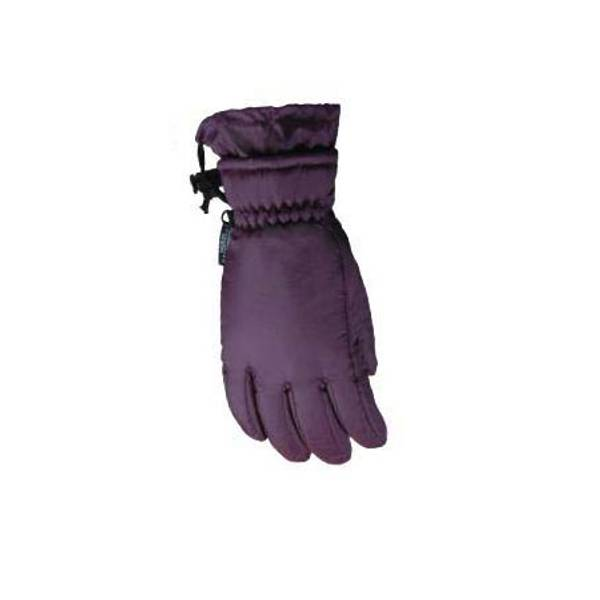 Women's Assorted Microfiber Thinsulate Ski Gloves
