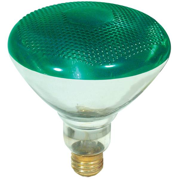 FEIT Electric PAR38 Outdoor Security Flood Light Bulb