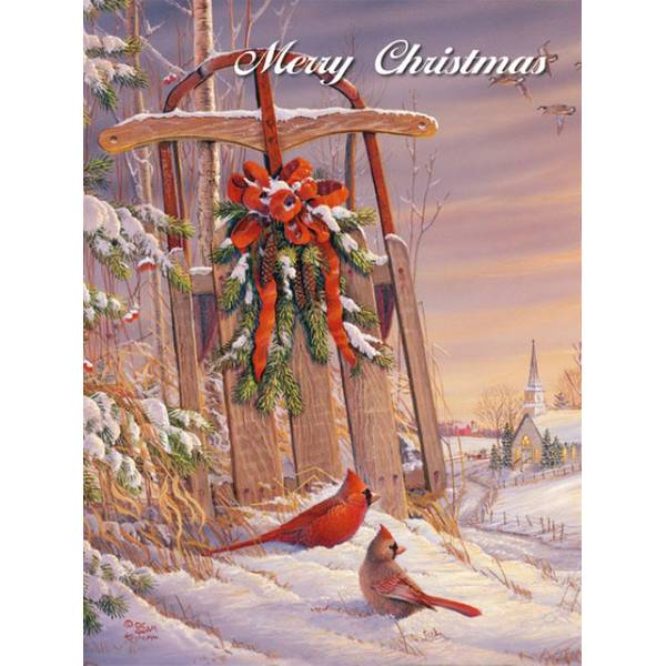 Wintertime Cardinal Boxed Christmas Cards