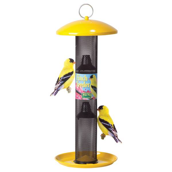 no bird straight image tube of feeder sided the birdfeeder yellow detailed p finch