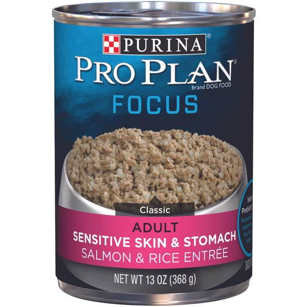 Focus Sensitive Skin & Stomach Salmon & Rice Entree Adult Wet Dog Food