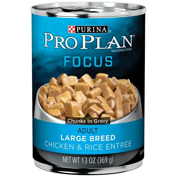 Focus Chicken & Rice Entree Adult Large Breed Wet Dog Food