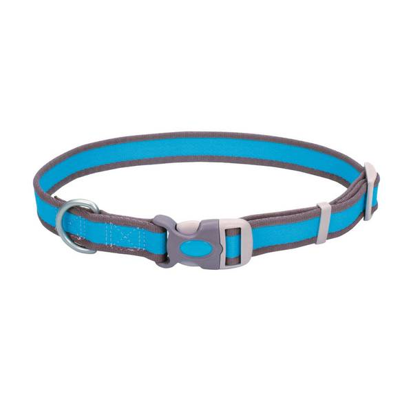Adjustable Pet Pro Bright Blue with Gray Collar