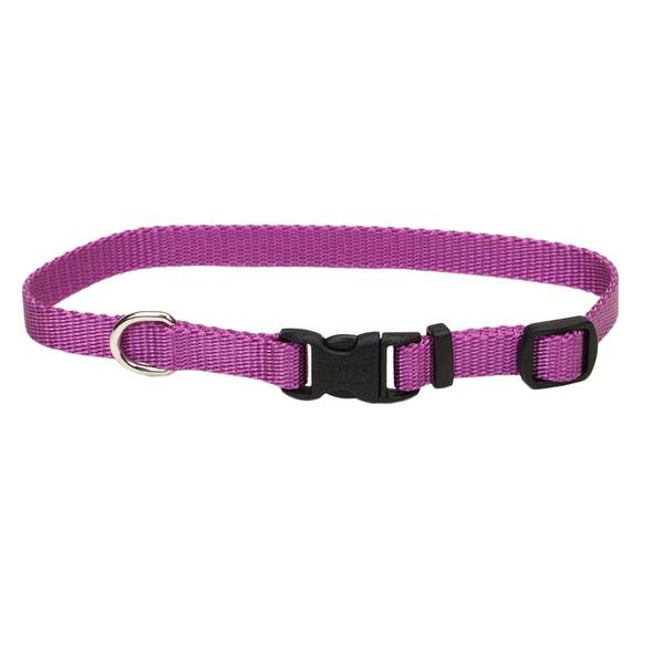 Adjustable Orchid Dog Collar