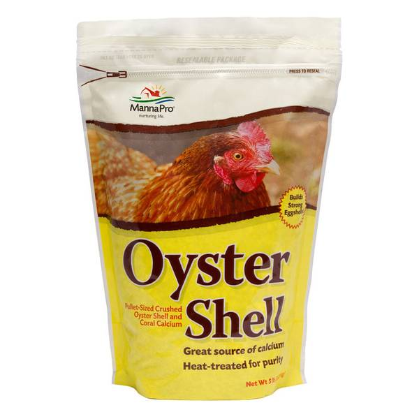 Oyster Shell 6/5 Pounds Chicken Feed