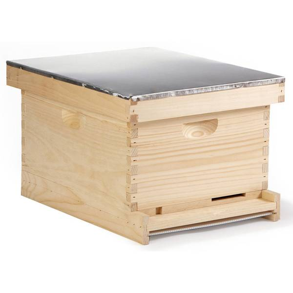 10-Frame Complete Langstroth Beehive