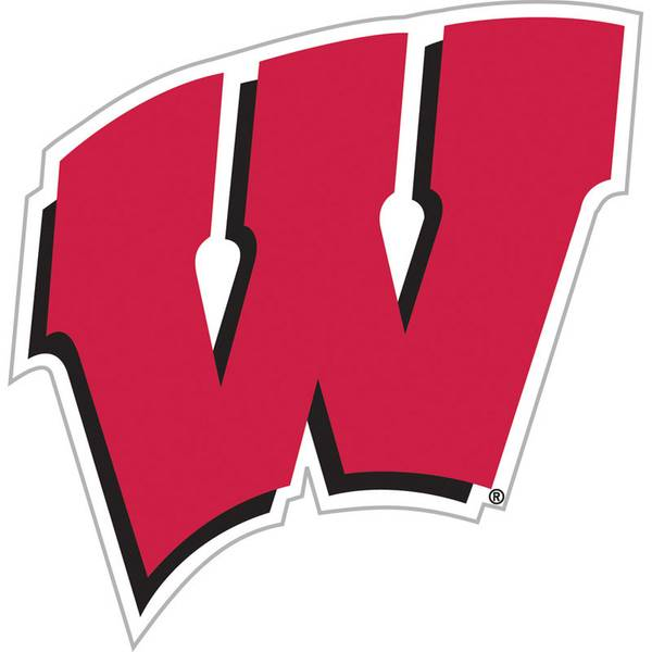University of Wisconsin Badgers Vinyl Car Magnet