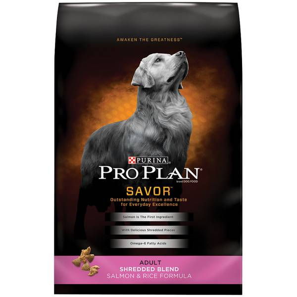 Savor Adult Shredded Blend Salmon & Rice Dog Food