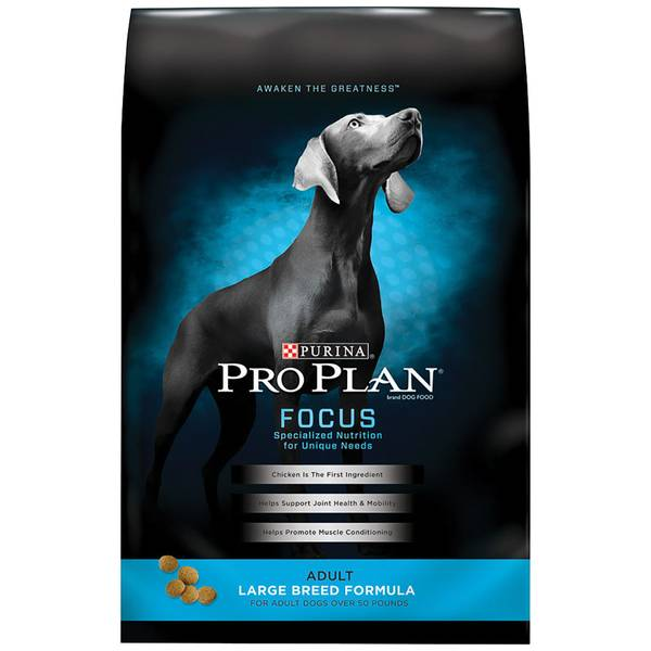 Focus Adult Large Breed Dog Food