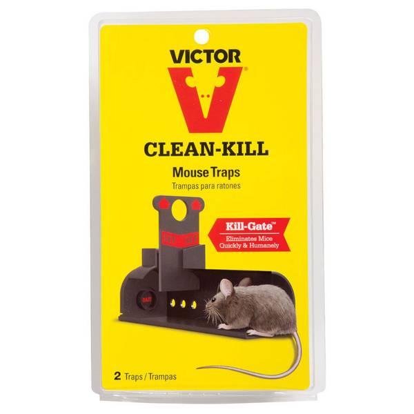 Clean - Kill Mouse Trap