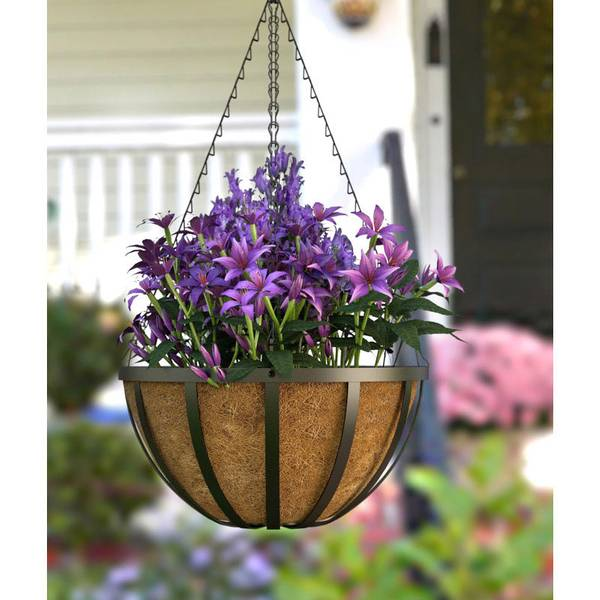 Rona Flower Baskets : Panacea quot english basket with coco liner