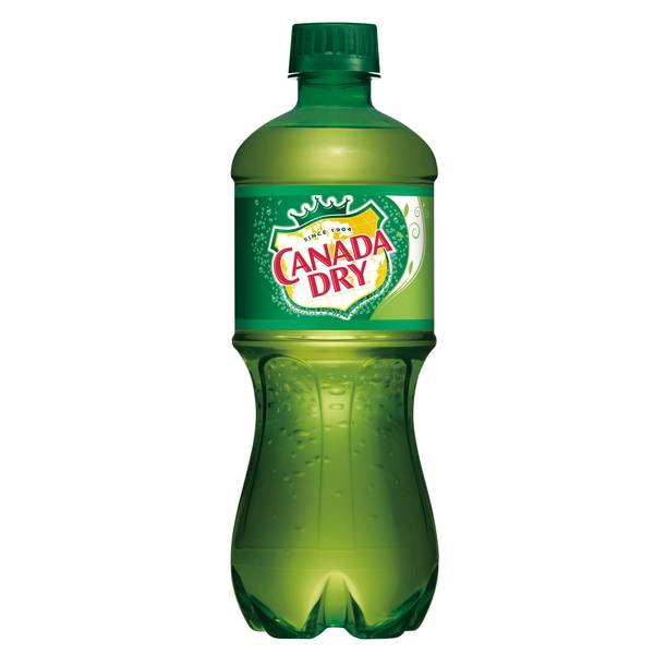 20 oz Ginger Ale