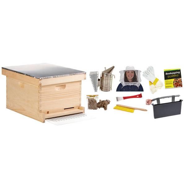10 Frame Beginner Hive Kit