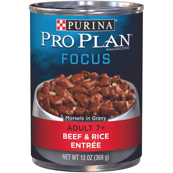 Focus Adult 7+ Beef & Rice Entree Wet Dog Food