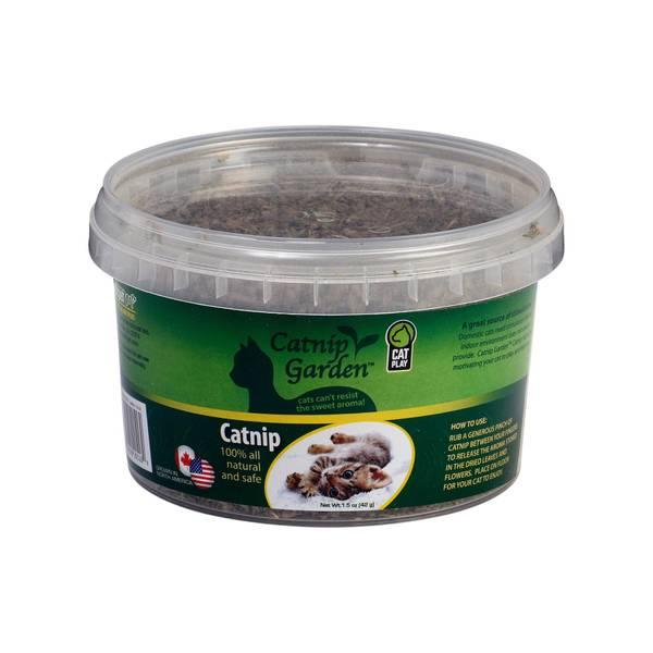 Catnip Garden Cups