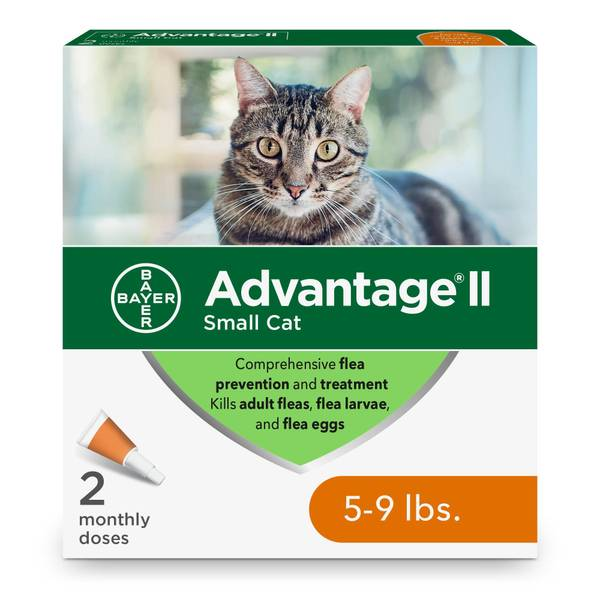 Small Cat Once a Month Topical Flea Prevention & Treatment