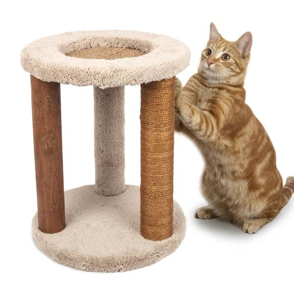 Playground-N-Lounge Cat Scratch Post