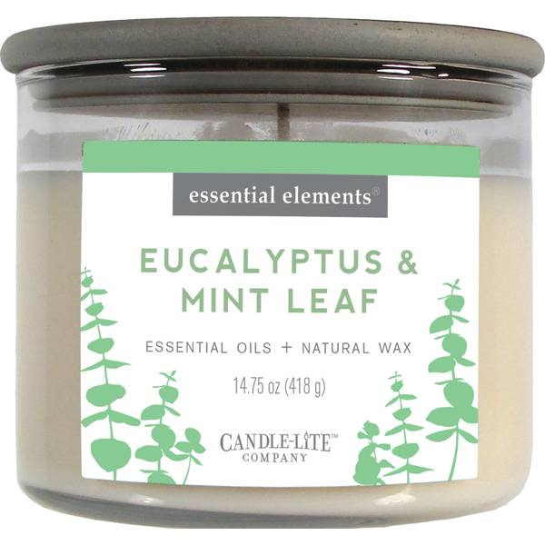 Eucalyptus & Cucmbr 3-Wick Candle