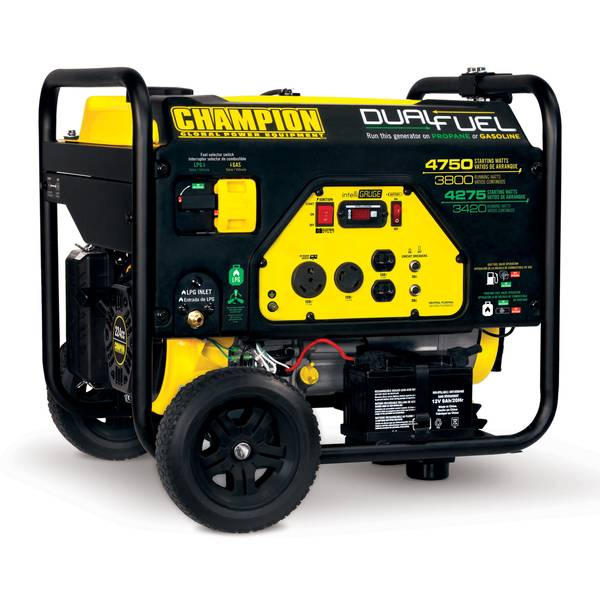 3800-Watt Dual Fuel RV Ready Portable Generator with Electric Start