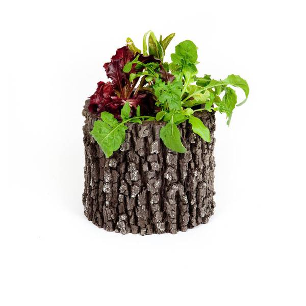 Surreal Oak Vertical Planter