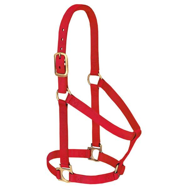 Basic Non-Adjustable Halter - Small Horse or Weanling Draft