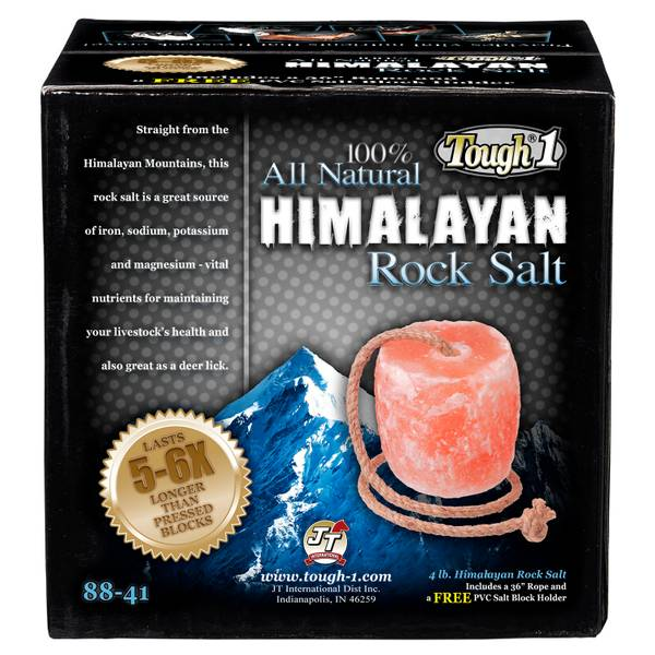Himalayan Rock Salt Brick