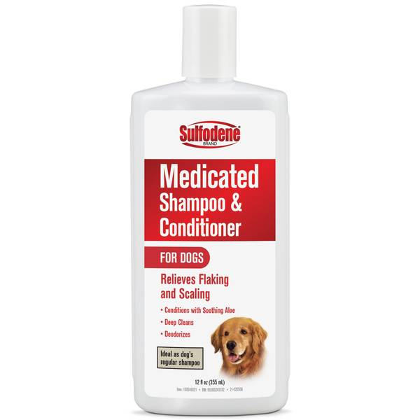 12 oz Medicated Shampoo and Conditioner for Dogs