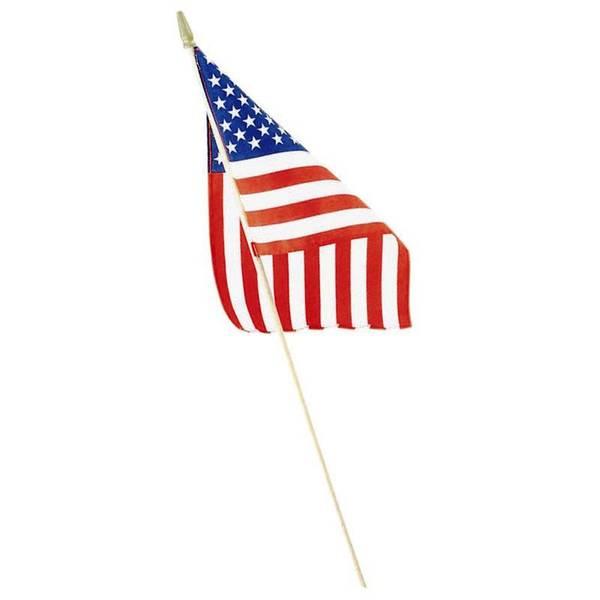 Handheld American Flag