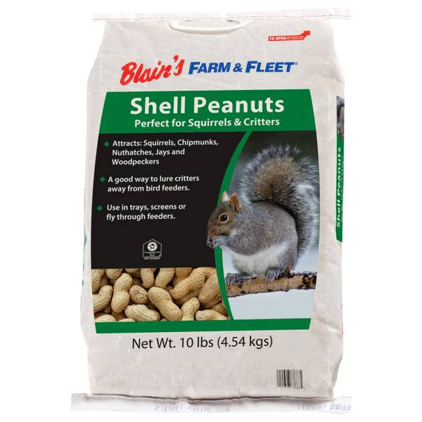10 lb In-Shell Peanuts for Squirrels & Critters